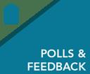 Polls and Feedback-2