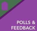 Polls and Feedback