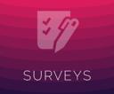 Surveys-4